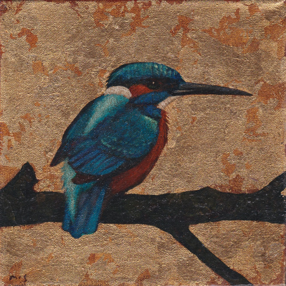 Kingfisher VIII. SOLD