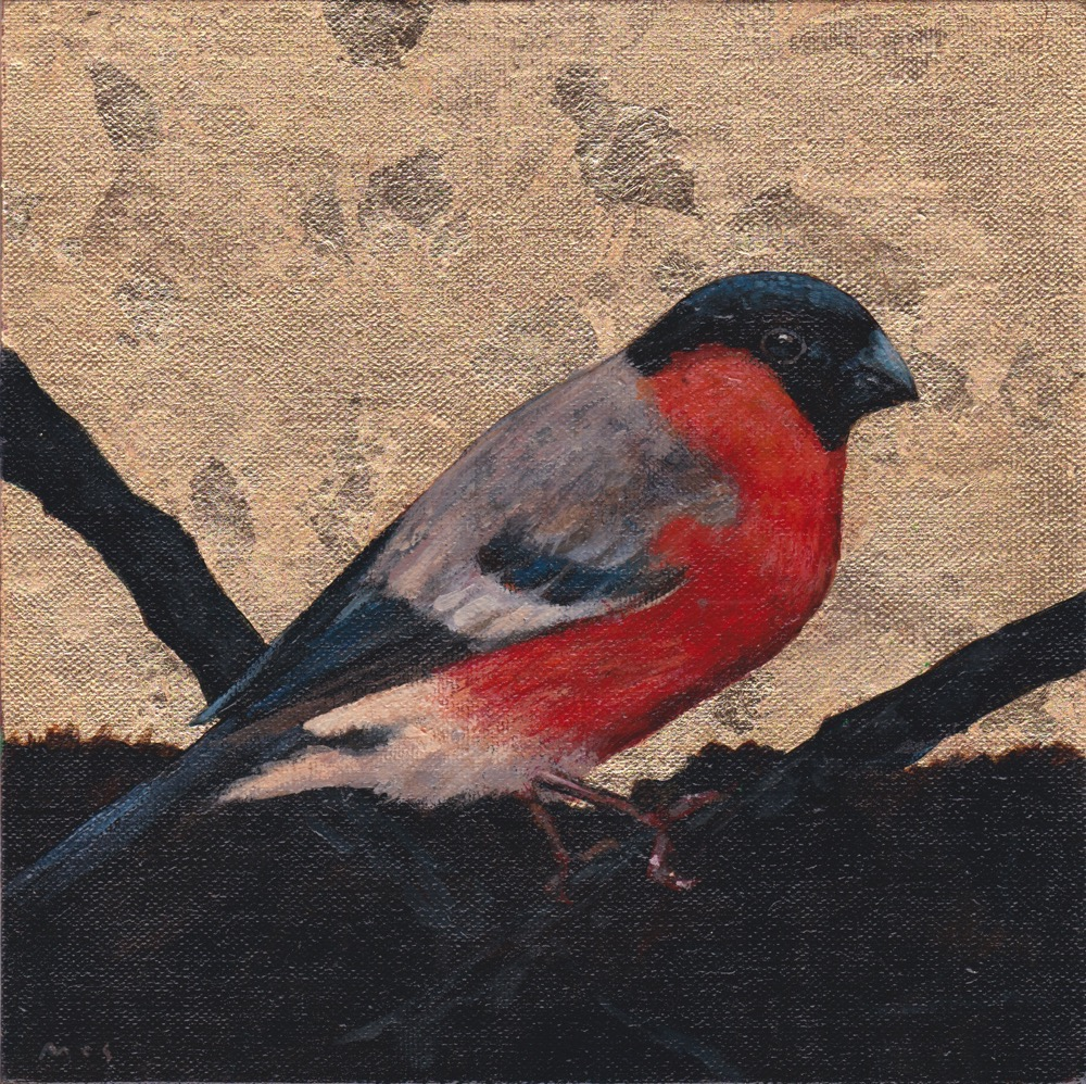 Bullfinch. SOLD