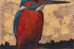 Kingfisher VII.  SOLD