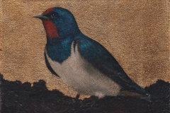 Swallow III. SOLD