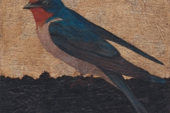 Swallow IV. SOLD