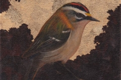 Redcrest. SOLD