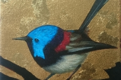 Fairy Wren. SOLD