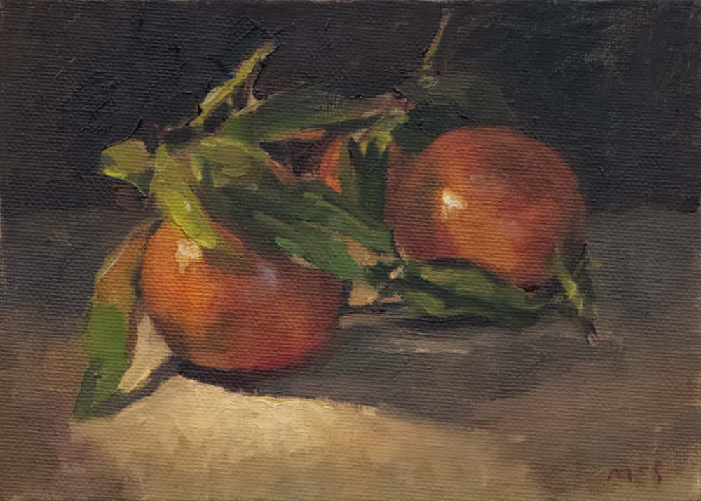 Clementines Study